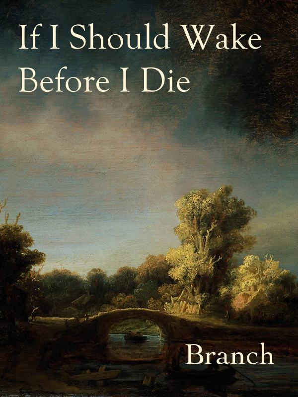 Ebook cover for the arc